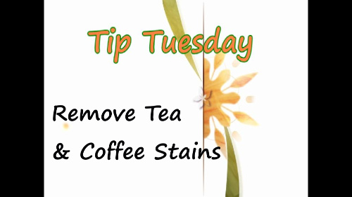 Remove Tea and Coffee Stains – Tip Tuesday